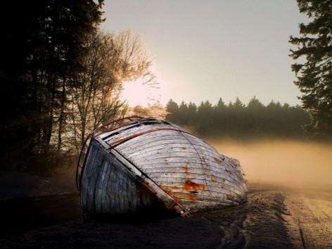 Ein Schiffswrack im Wald Thumbnail