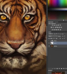 Digital Painting lernen Thumbnail