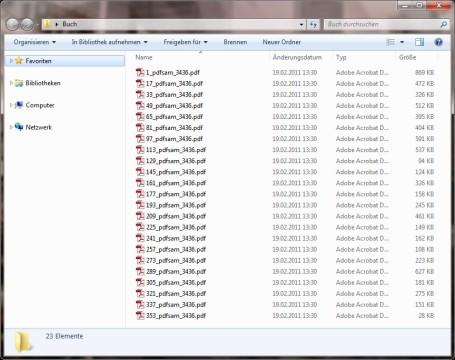 2.-pdf-sam-export